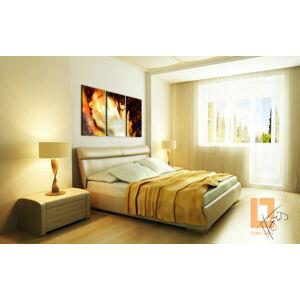 Dream of passion Zľava 53 % / Tom Loris 90x60 cm 013W3/24h (3 dielny obraz na stenu )