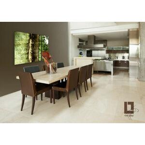 Abstract NATURE Zľava 33 % / Tom Loris 90X60 cm 001N2/24h (objednajte do 12:00 s doručením do 24 hodín)
