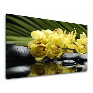 Obraz na stenu Zľava 60% FENG SHUI 30x40 cm FS012E11/24h (skladom)