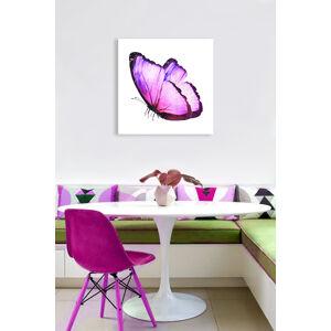 Obraz Fialový Motýľ na zrkadle Mirrora 08 - 50x50 cm (Obrazy Mirrora)