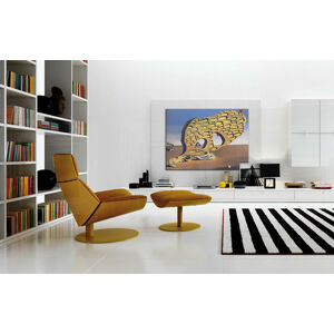 Obraz na plátne MOJA MATKA – Salvador Dalí REP025 (reprodukcia 80x60 cm)