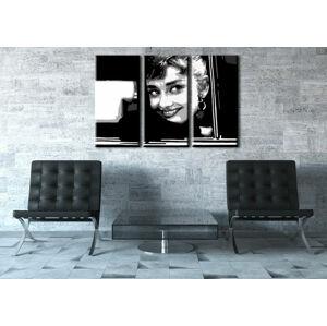 Ručne maľovaný POP Art obraz Audrey HEPBHURN 3 dielny  ah1 (POP ART obrazy)