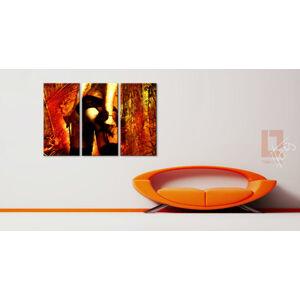 noir ROSE / Tom Loris 022W3 (3 dielny obraz na stenu )