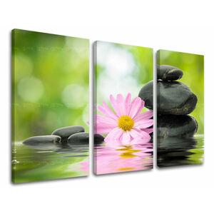 Obraz na stenu 3 dielny FENG SHUI FS009E30 (HD obrazy na plátne)