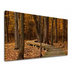 Obraz na stenu STROMY ST018E11 (moderné obrazy na plátne)